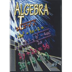 Algebra I DVD 1107